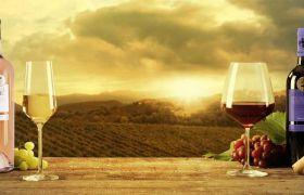 Les Vins de Provence : Rouge, Rosé ou Blanc ?