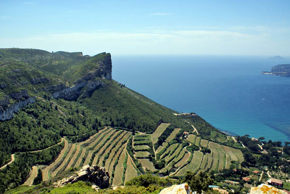 Les vins de provence syndicat d 39 initiative marseille tourisme - Bandol office du tourisme ...