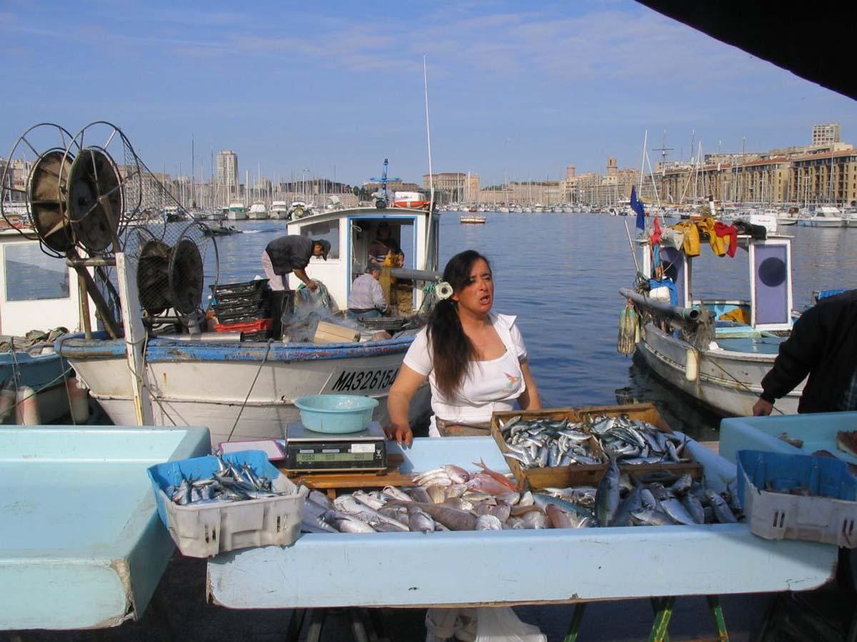 Visiter le vieux port de marseille syndicat d 39 initiative - Restaurant poisson marseille vieux port ...